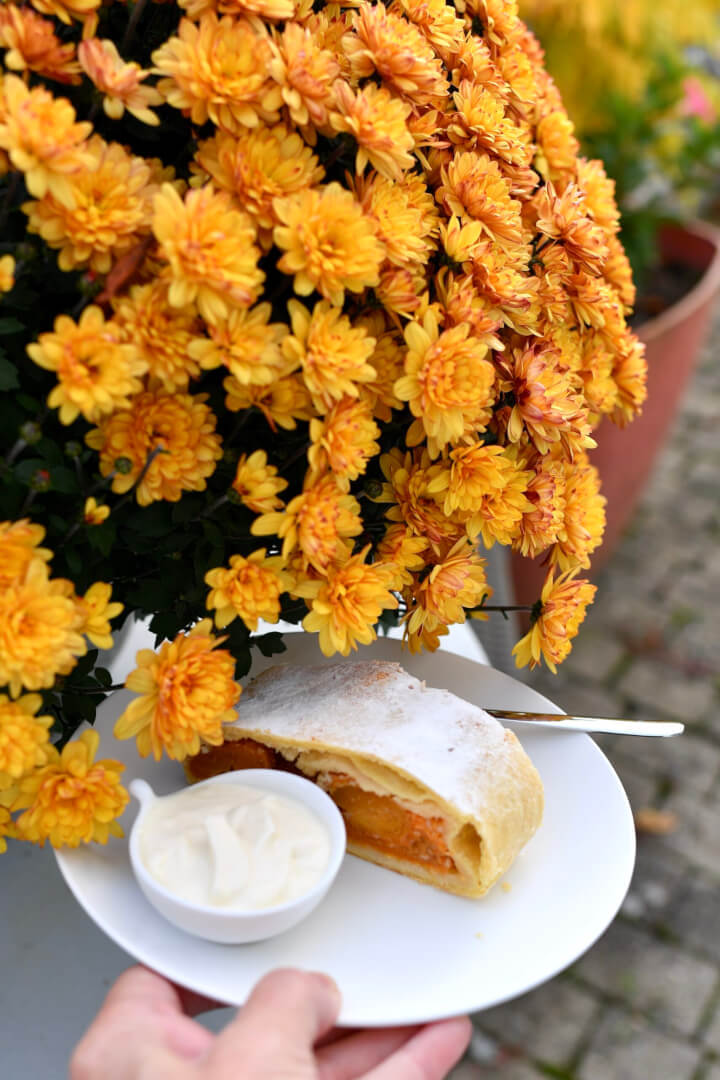 The FunkyForty Apricot Strudel
