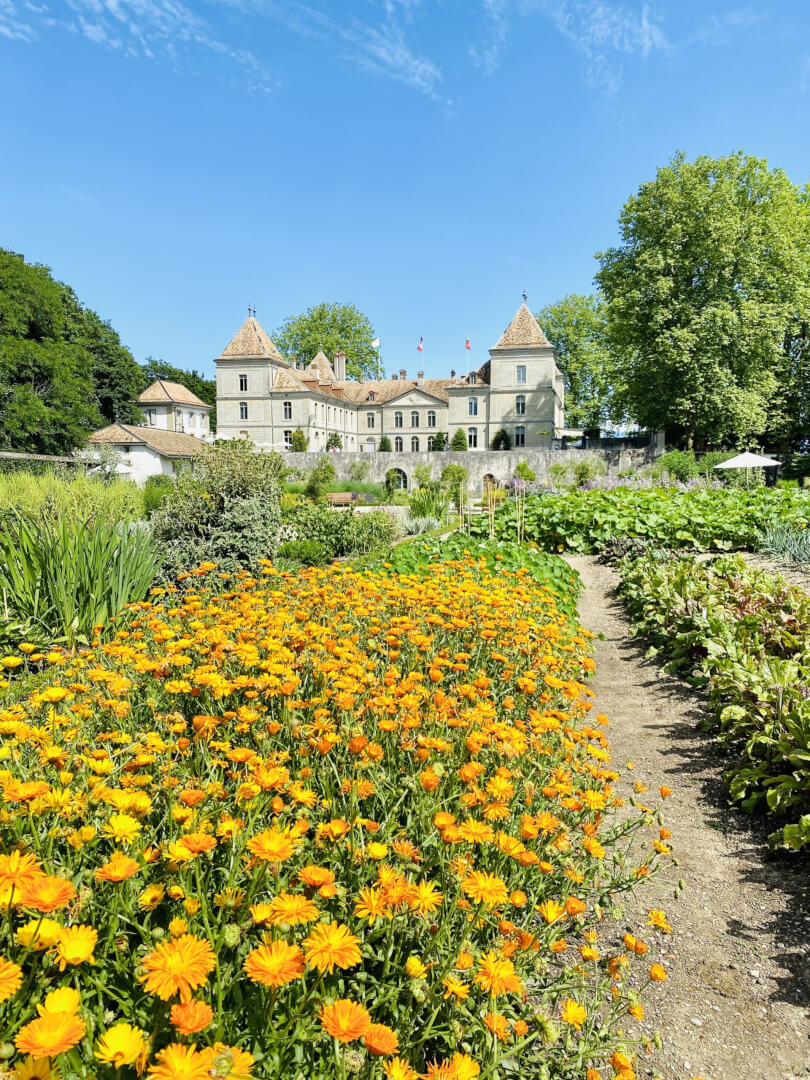 A secret Swiss Treasure - Prangins, Wakker Prize Winner 2021 & Nyon Region